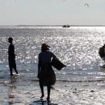 Retour de pêche au Mozambique