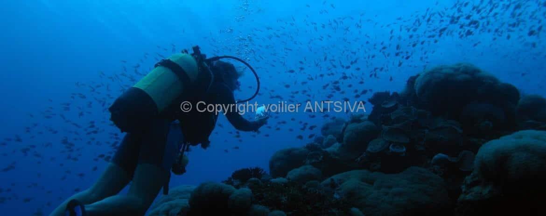 plongée à Nosy Be avec Antsiva