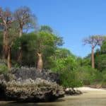 Moromba baie