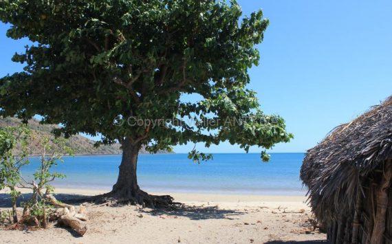 Nosy Mitsio à Madagascar